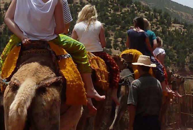 006_Camel Rides
